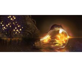 空間金魚HIDETOSHI MINAMATA 「灯 ーわけてもらうー」